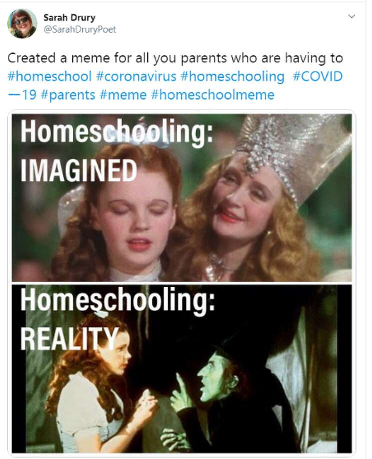Homeschooling Memes Let Parents Vent About Their