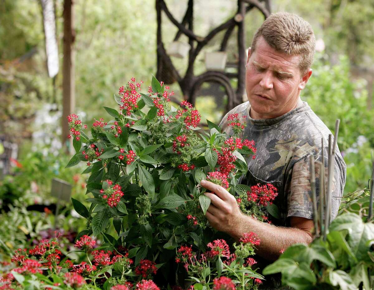 Joshua Kornegay, owner of Joshua's Native Plants, points out various flowering plants that help feed hummingbirds and butterflies in a file photo from 2008.