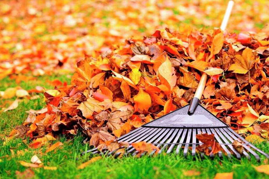 The city of Big Rapids will be performing a spring leaf pick up through April 11. During this time, residents are asked to rake their leaves in a pile and keep them loose. Ifwind is a concern, wetting the leaves may help. (Courtesy photo)