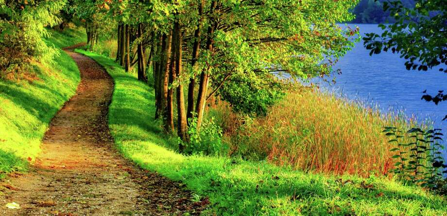 Forest path near lake Photo: Dreamstime / (c) Yellowind | Dreamstime.com