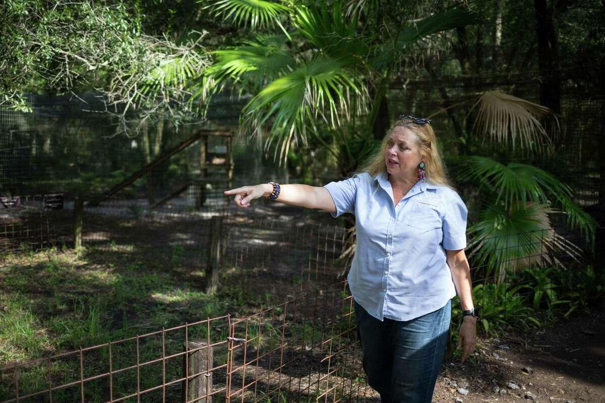 Big Cat Rescue CEO Carole Baskin walks the property in Tampa in 2017.