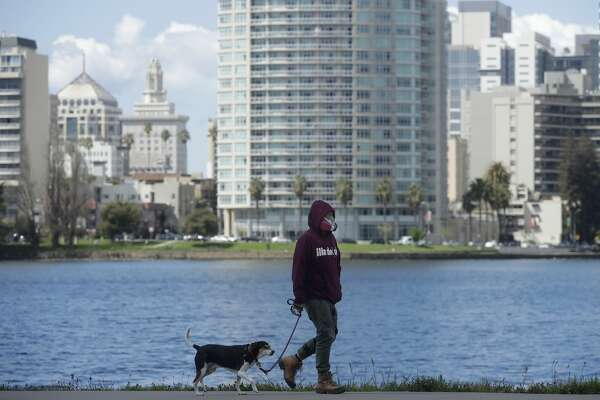 A man wears a mask while walking his dog in front of Lake Merritt in Oakland, Calif., Thursday, March 26, 2020.