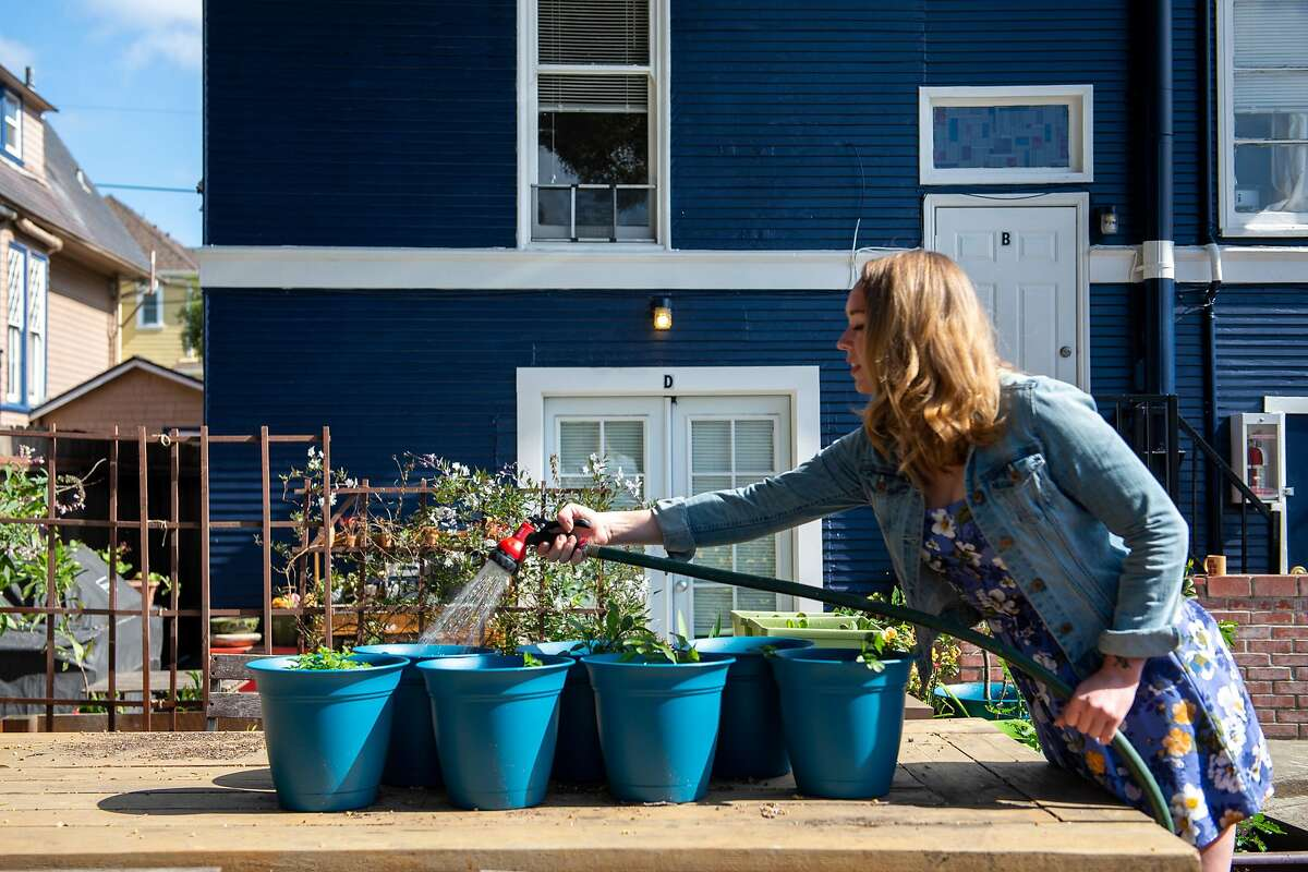 Tiffany Keller, a flight attendant, waters her container garden behind her apartment in Alameda. During the coronavirus pandemic, more people are turning to food gardening.