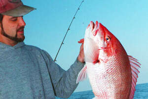 Anglers fishing for red snapper from private boats in federal waters off Texas are projected to have a 63-day season that opens June 1.