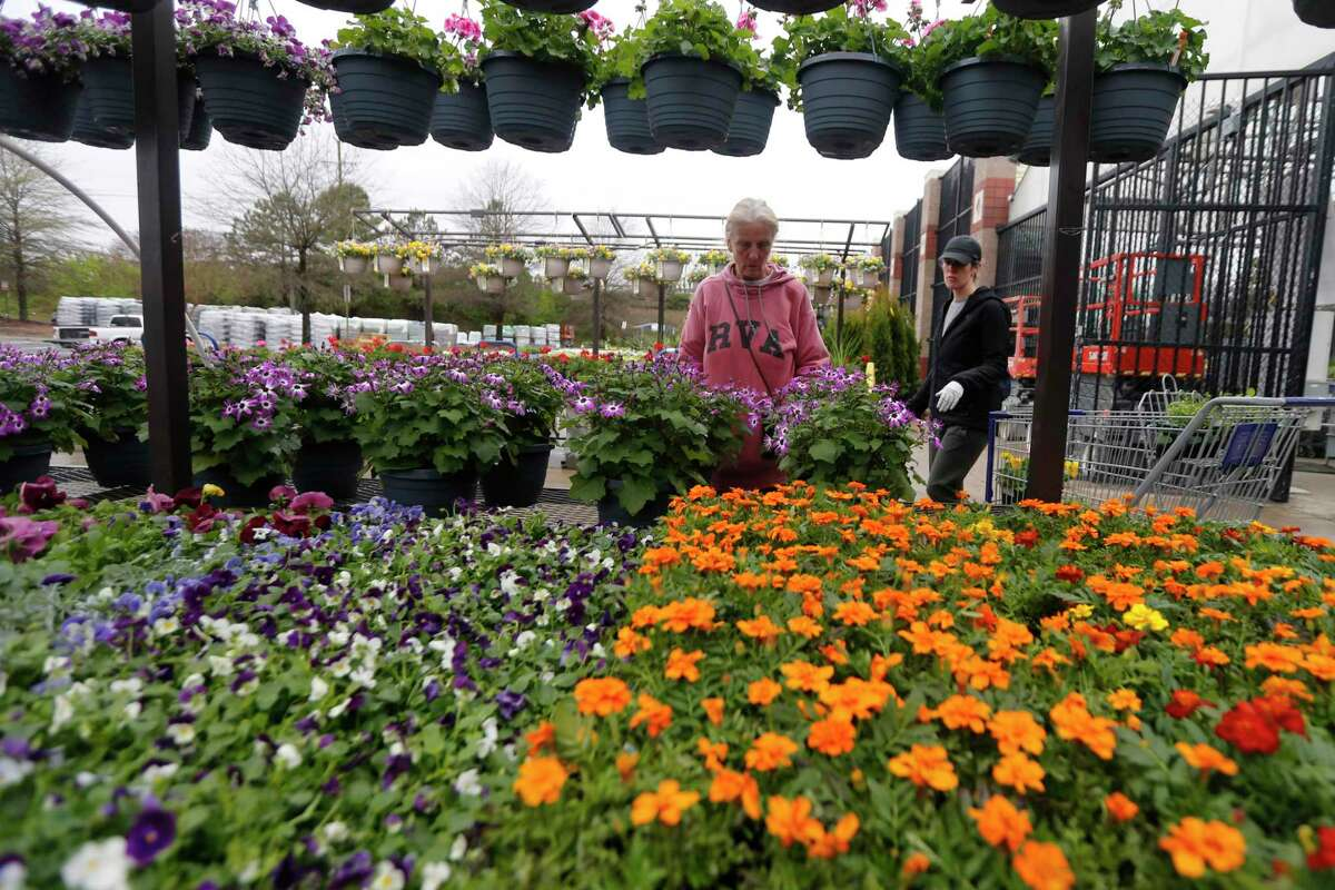 Gail Henrickson, left, and her daughter, Melissa, shop for plants at a garden center in Richmond, Va. The two work at a local restaurant that has closed down and are doing their spring gardening.