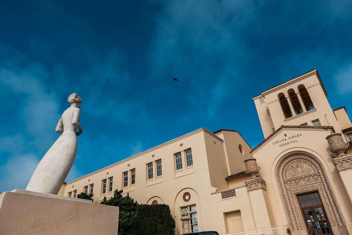 A bird is seen flying above Laguna Honda Hospital in San Francisco, Calif. on Tuesday March 31, 2020.