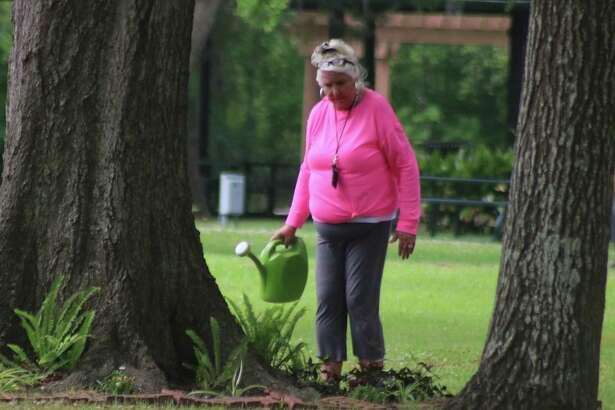 Every fern in Stevenson Park eagerly awaits Wanda Murphy's arrival.