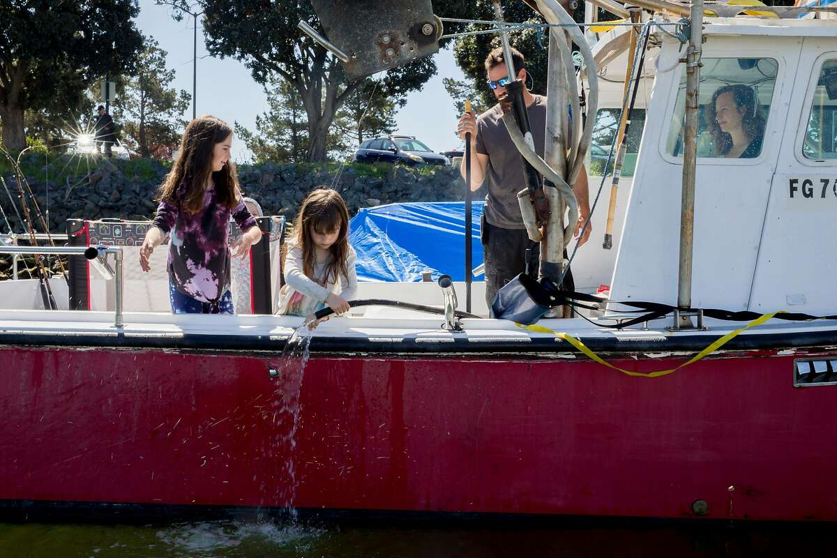 """Hazel Jaeger (left), 9, and Rhye Jaeger, 6, wash their hands after helping their dad Adam Sewall and mom Eleza Jaeger measure fresh halibut on board the family's fishing boat in the Berkeley Marina in Berkeley, Calif. Wednesday, April 1, 2020. Adam Sewall and Eleza Jaeger help their daughters Rhye Jaeger (center), 6, and Hazel Jaeger, 9, measure a freshly caught halibut fish on the family's fishing boat in the Berkeley Marina in Berkeley, Calif. Wednesday, April 1, 2020. Before the shelter-in-place orders, the family operated a fishing charter boat, but that business has come to a halt. They've developed a big social media presence around """"Fish School,"""" their homeschooling from the boat, and are now catching fish while other commercial fishing boats have stopped."""