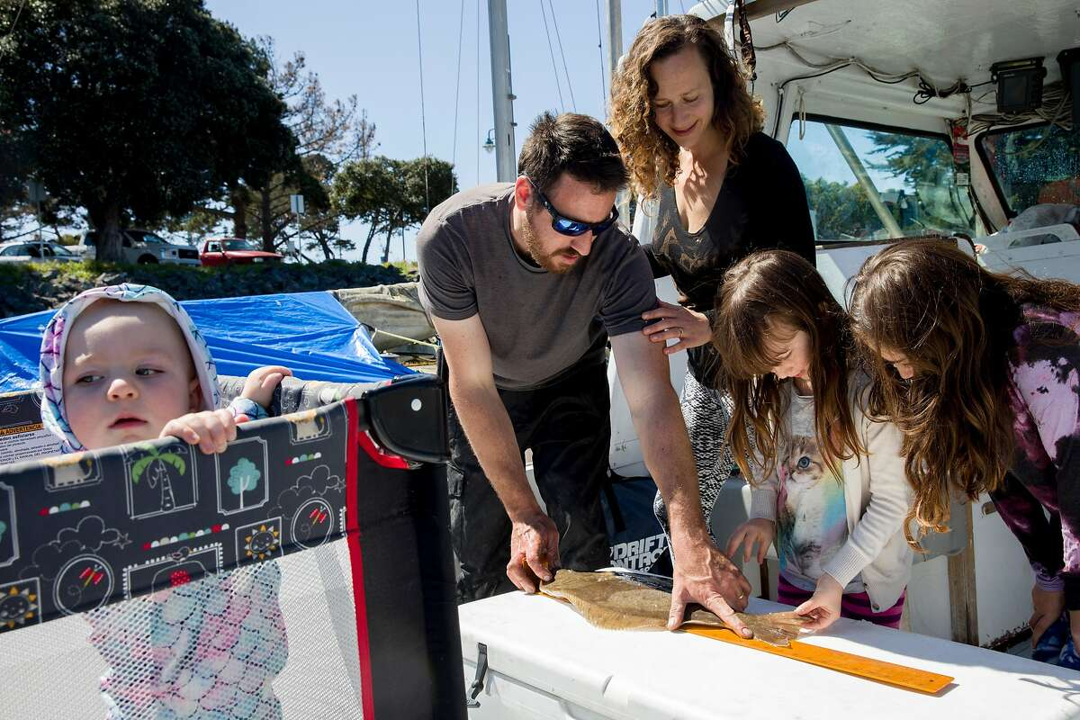 """Adam Sewall and Eleza Jaeger help their daughters Rhye Jaeger (center), 6, and Hazel Jaeger, 9, measure a freshly caught halibut fish on the family's fishing boat in the Berkeley Marina in Berkeley, Calif. Wednesday, April 1, 2020. Before the shelter-in-place orders, the family operated a fishing charter boat, but that business has come to a halt. They've developed a big social media presence around """"Fish School,"""" their homeschooling from the boat, and are now catching fish while other commercial fishing boats have stopped."""