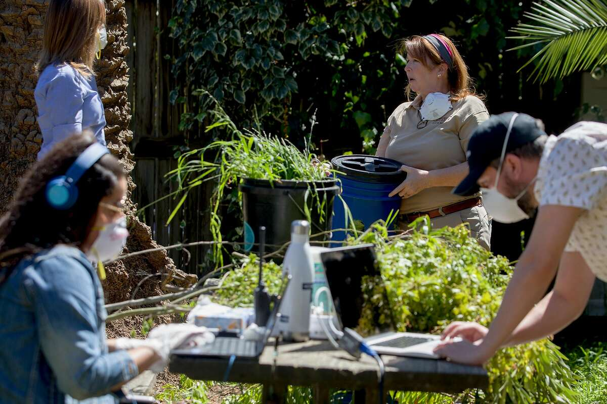 Marketing team members Isabella Linares (left) and Daniel Flynn (right) work on technicals as zoological manager Ann Marie Bisagno (center) chats with host Michelle Myers ahead of a subscription-based live stream broadcast held in the giraffe enclosure at Oakland Zoo in Oakland, Calif. Thursday, April 2, 2020. Since the Bay Area's shelter-in-place order, Oakland Zoo has been closed to the public, but has started scheduling live video behind-the-scenes visits with various zoo animals.