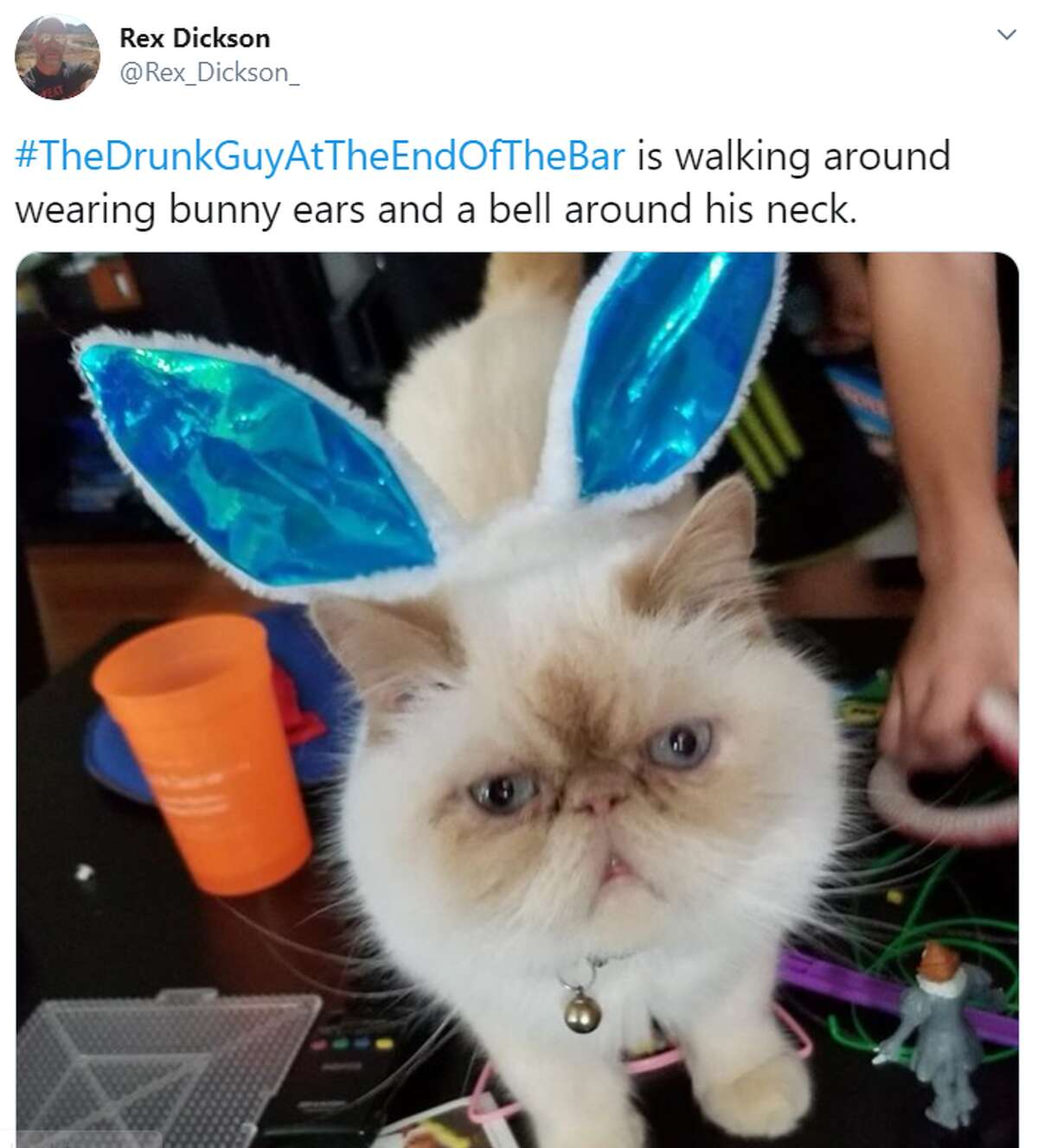 Twitter users uploaded photos of their pets with the hashtag #TheDrunkGuyAtTheEndOfTheBar and described the adorable animals' antics as if they were inebriated bar patrons, an annoyance essentially absent from a world mostly on lockdown due to COVID-19.