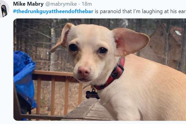 Twitter users uploaded photos of their pets with the hashtag #TheDrunkGuyAtTheEndOfTheBar and described the adorable animals' antics as if they were inebriated bar patrons, an annoyance essentially absent from a world mostly on lockdown due to COVID-19. Twitter users uploaded photos of their pets with the hashtag #TheDrunkGuyAtTheEndOfTheBar and described the adorable animals' antics as if they were inebriated bar patrons, an annoyance essentially absent from a world mostly on lockdown due to COVID-19. Twitter users uploaded photos of their pets with the hashtag #TheDrunkGuyAtTheEndOfTheBar and described the adorable animals' antics as if they were inebriated bar patrons, an annoyance essentially absent from a world mostly on lockdown due to COVID-19.