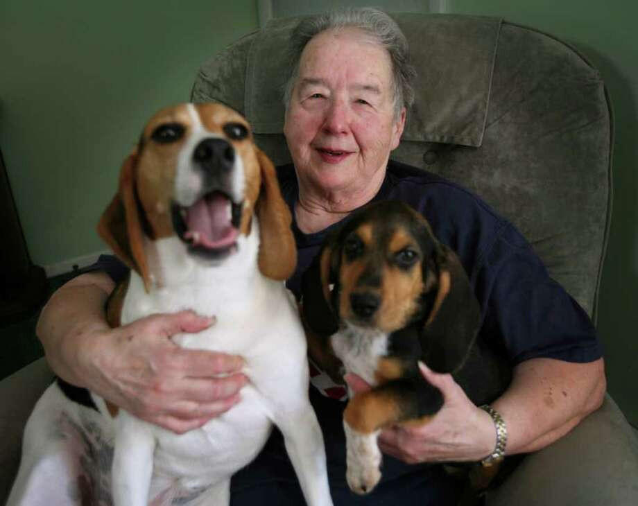 Jackie Shea of Shelton, who discovered that both she and her newly discovered half-sister share a love of animals, with her beagles Bailey, left, and Brady. Photo: Brian A. Pounds / Connecticut Post