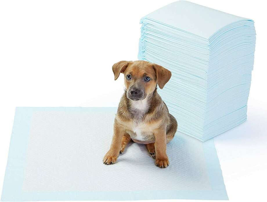 AmazonBasics Dog and Puppy Training Pads, $16.99 Photo: Amazon
