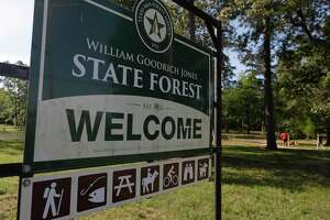 Governor Greg Abbott announced Tuesday all state parks, including Jones State Forest, would be closed to minimize the spread of the new coronavirus.