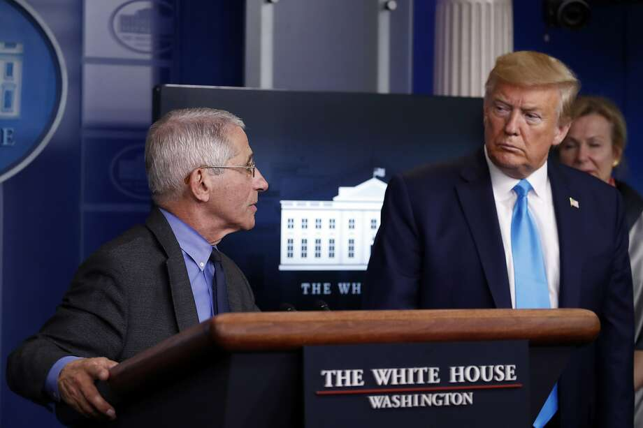 Dr. Anthony Fauci, director of the National Institute of Allergy and Infectious Diseases, turns to President Donald Trump as he speaks about the coronavirus in the James Brady Press Briefing Room of the White House, Tuesday, April 7, 2020, in Washington. Photo: Alex Brandon, Associated Press