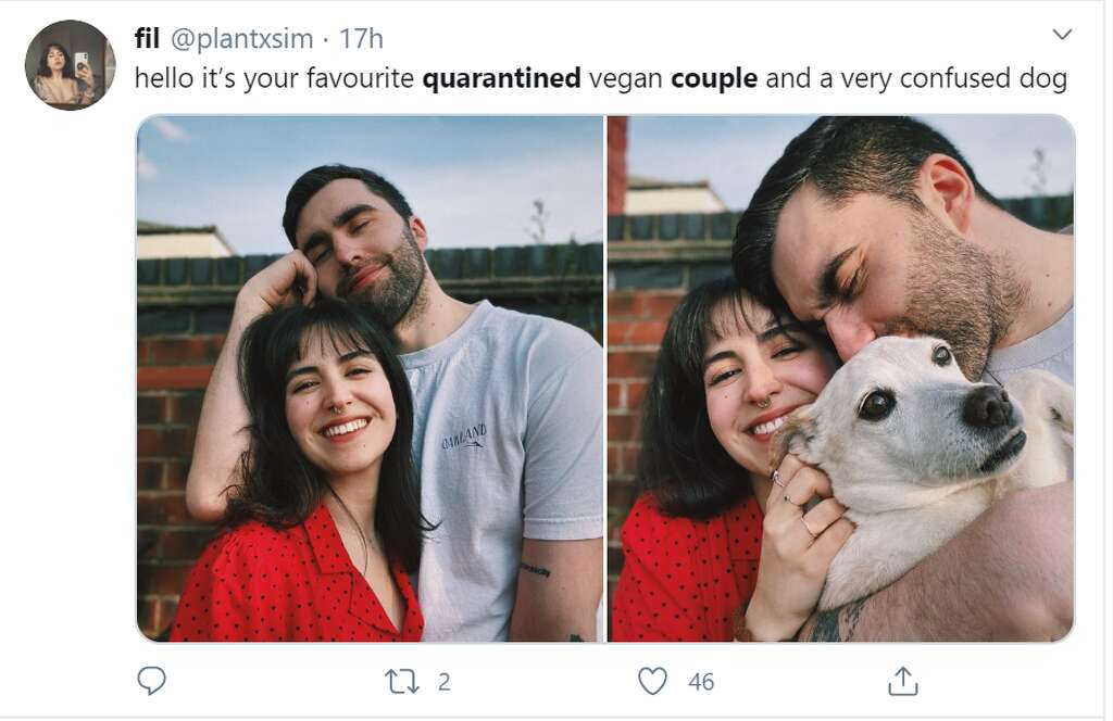 Funny Quarantined Couples Memes Show Life Amid Stay At Home Order Midland Daily News