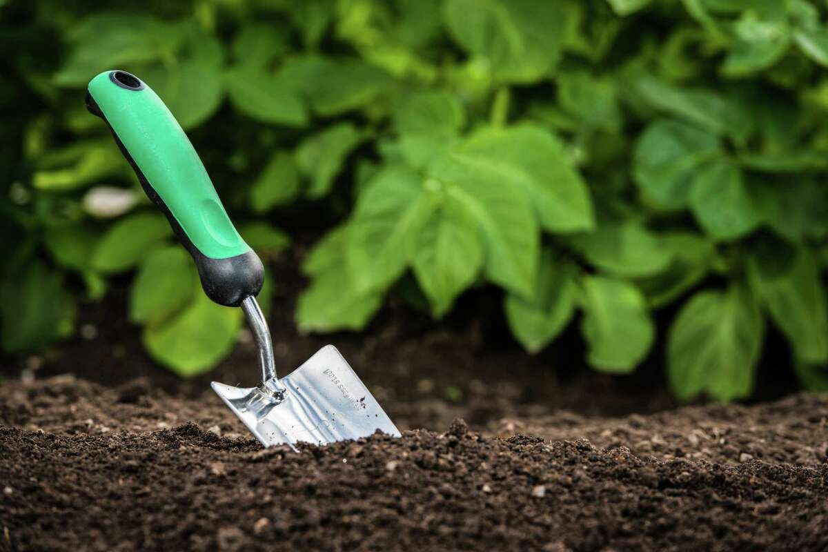 Ridgefield Continuing Education is offering a new online course, Organic Gardening 101.