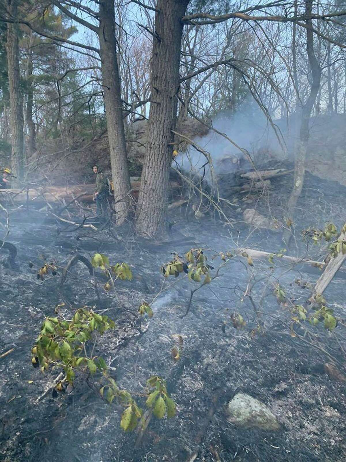 A brush fire deep in the woods off of Skokorat Street on Monday, April 6, 2020.