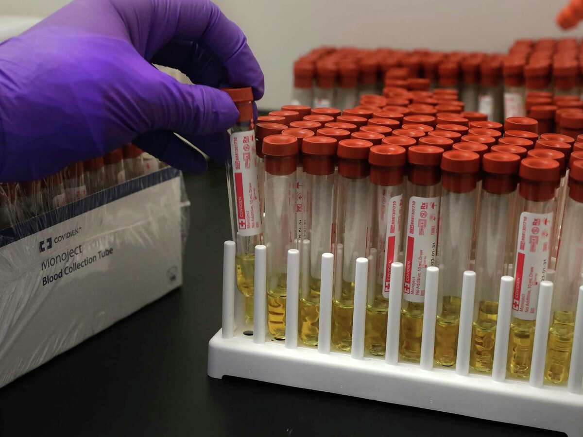 Test tubes are prepared as part of the process of gathering samples to determine who is infected by the coronavirus.