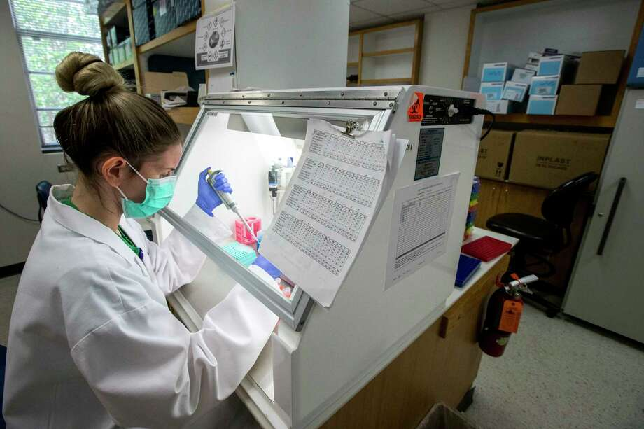 Ashlie Renner, research technician, prepares a Polymerase Chain Reaction tray while working in a lab on Thursday, April 9, 2020 at Baylor College of Medicine in Houston. BCM is working on an experimental therapy transfusing the blood plasma of people who've recovered from COVID-19 into patients fighting the disease. Baylor and the Gulf Coast Regional Blood Center are partnering to make the potentially therapeutic plasma available to hospitals that get the Food and Drug Administration's permission to transfuse it into patients. Baylor will screen and test interested donors and the blood center will collect the plasma and get it to hospitals. Photo: Brett Coomer, Staff Photographer / © 2020 Houston Chronicle