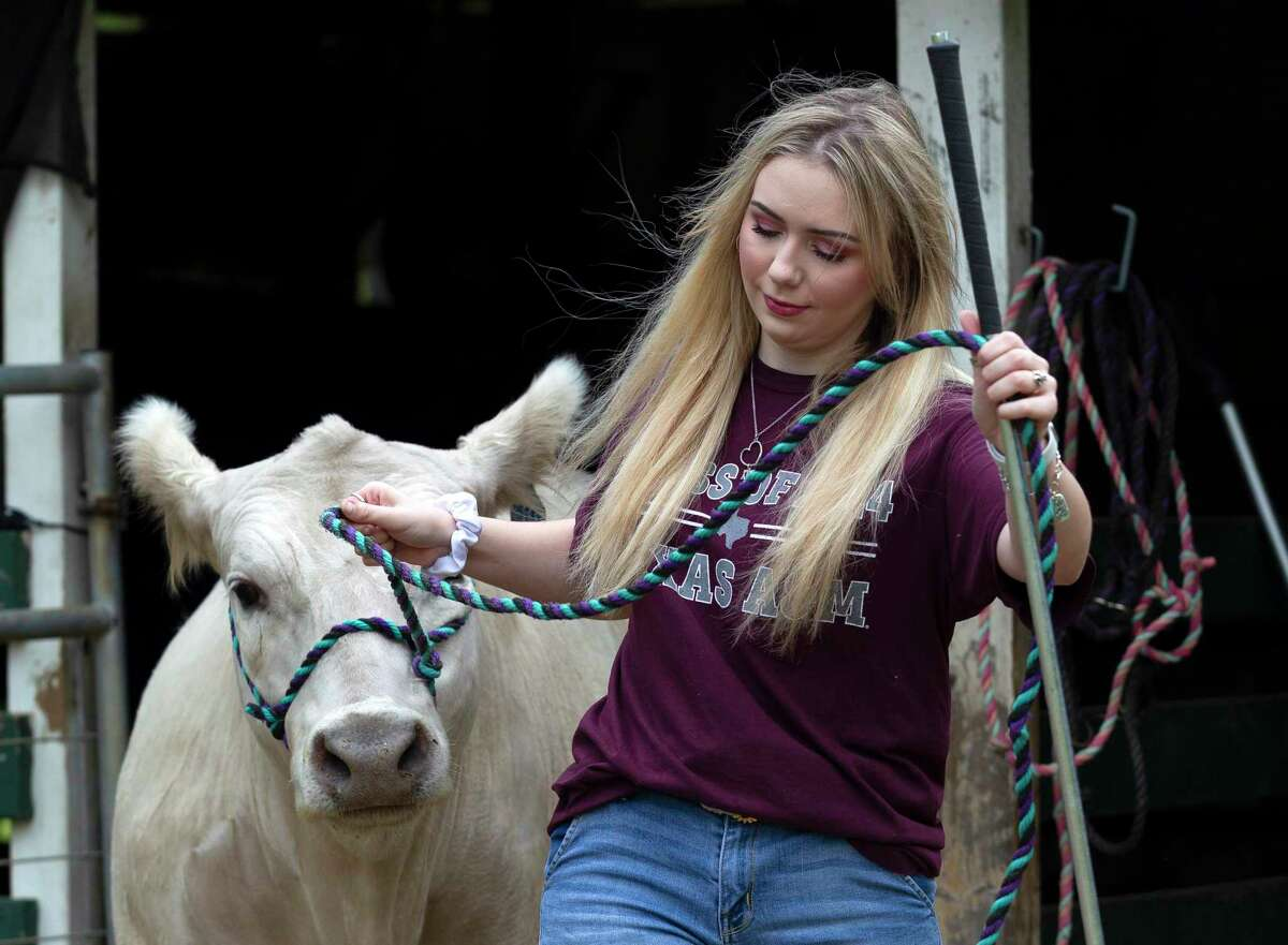 Magnolia senior Marie Yanchak worked with her livestock at her parent's home March 13 in Magnolia. The Montgomery County Fair Association confirmed Friday that it still plans to move forward with all events and activities scheduled for April 9-18, except for the annual the Senior Citizens Day assembly.