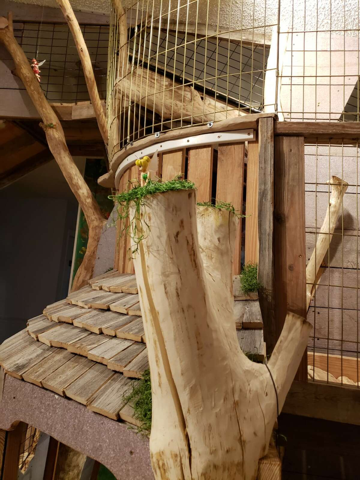 Made entirely from recycled materials, the treehouse has practically everything a kid could want: four bedrooms, slides, bookshelves, ball slide, rope bridges and even secret cubbies and fairy doors for his grandkids to hide things in.