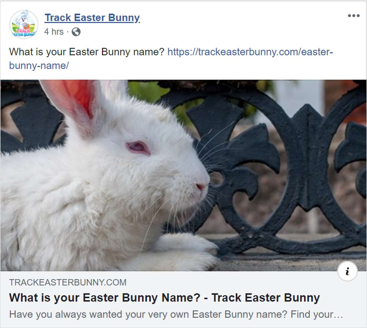 Play fun Easter games Play fun Easter games like finding out what your Easter Bunny name is through the Track Bunny website.