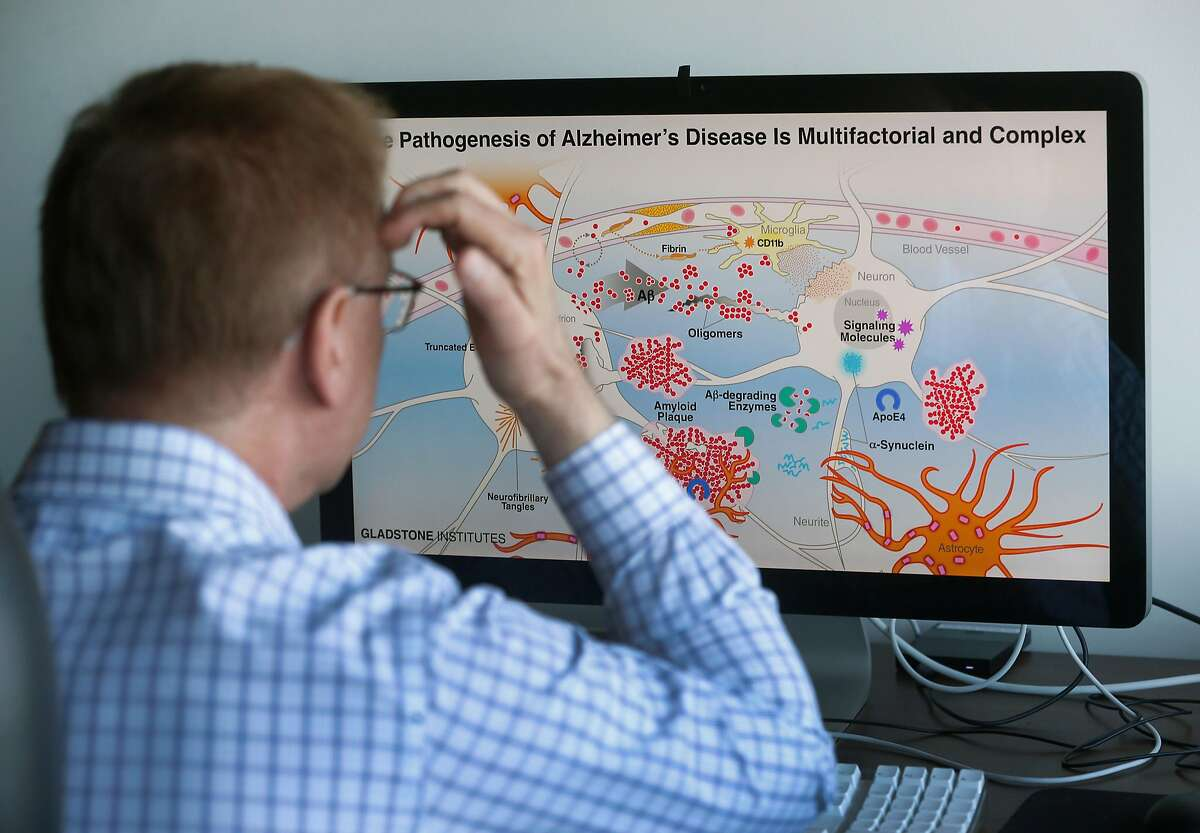 Dr. Lennart Mucke, director of the Gladstone Institute of Neurological Disease, works on an Alzheimer's study in his home office in San Francisco, Calif. on Tuesday, April 7, 2020. Progress on Mucke's research could grind to a halt if the coronavirus pandemic continues for several months.
