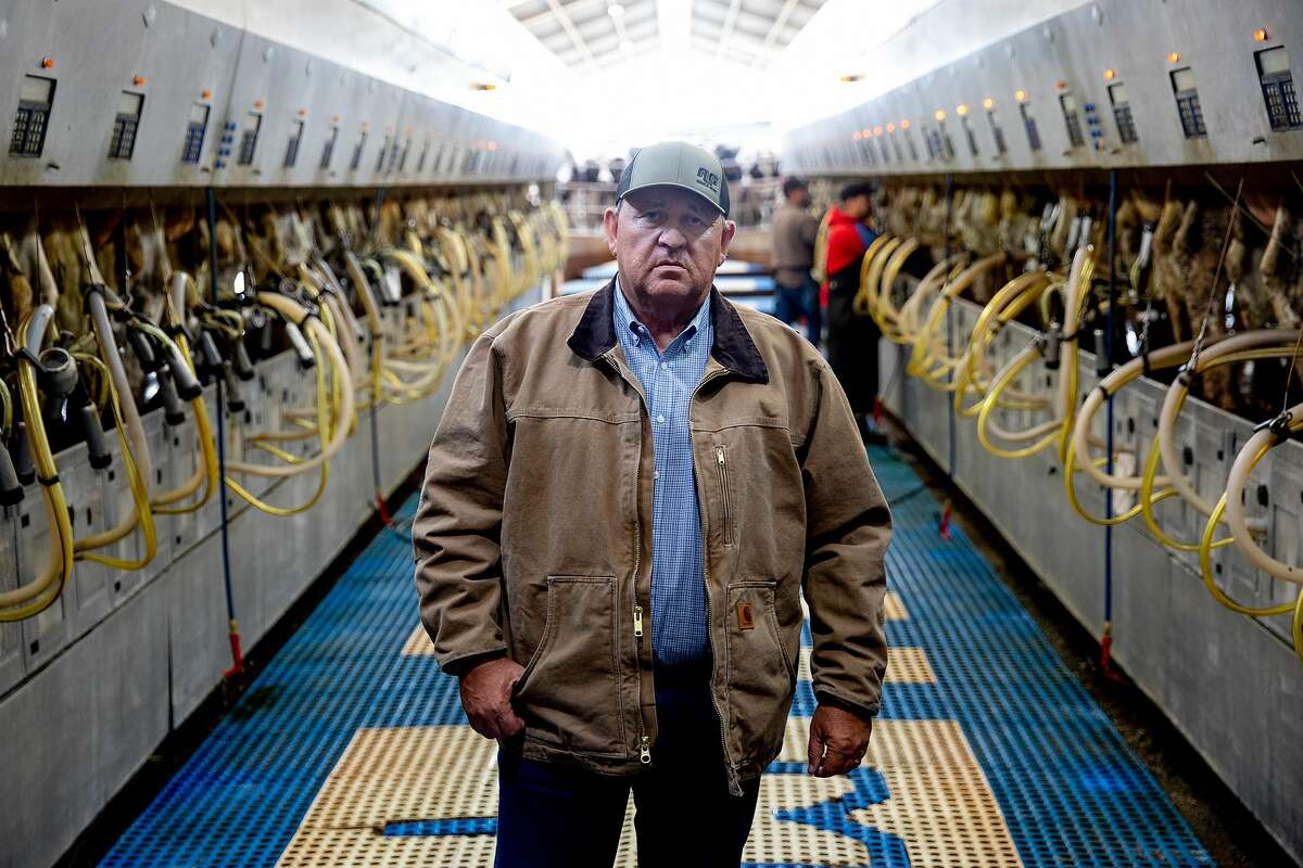Lima Ranch owner Jack Hamm poses for a portrait in the milking barn as employees milk dozens of dairy cows at Lima Ranch in Lodi, Calif. Thursday, April 9, 2020. Big changes have hit the agriculture industry during the Coronavirus outbreak. One of the biggest disruptions is to the dairy industry, with the price of milk in free fall.