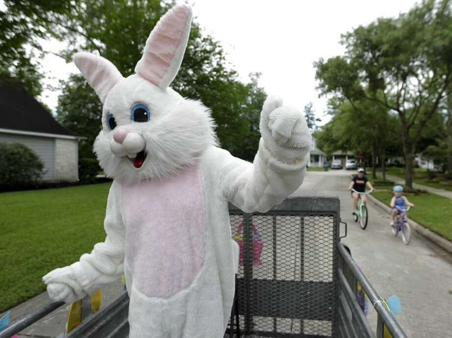 Michael Bisbee, dressed as the Easter Bunny, dances as a family rides beside him as his family drives around neighborhoods in The Woodlands to spread some Easter joy, Friday, April 10, 2020. BisbeeÕs calendar this time of year is typically full of East Bunny appearances for The Woodlands Township, but after Montgomery County officials canceled mass gatherings and other events, the Bisbee family decided they would drive around neighborhoods in The Woodlands with Michael dressed in his Easter Bunny costume to spread joy. Photo: Jason Fochtman/Staff Photographer / 2020 ? Houston Chronicle