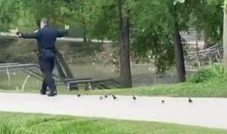Houston Police Assistant Chief Larry J. Satterwhite helped a group of lost ducklings back to safety after finding them in Memorial Park on Saturday. Photo: Houston Police Department/Twitter