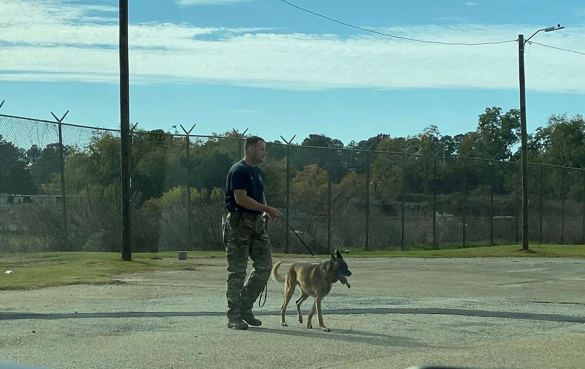 Former A's catcher Rob Bowen works with his newest K9 partner, Reb.