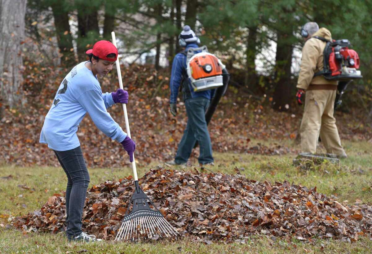 Clair Sebastian, of Brookfield, takes part in the annual Rake 'N Bake event, in Brookfield, with other members of the Brookfield High School Key Club, to do fall cleanup on a yard on Powder Horn Hill Road, in Brookfield on Saturday, November 14, 2015, in Brookfield, Conn.