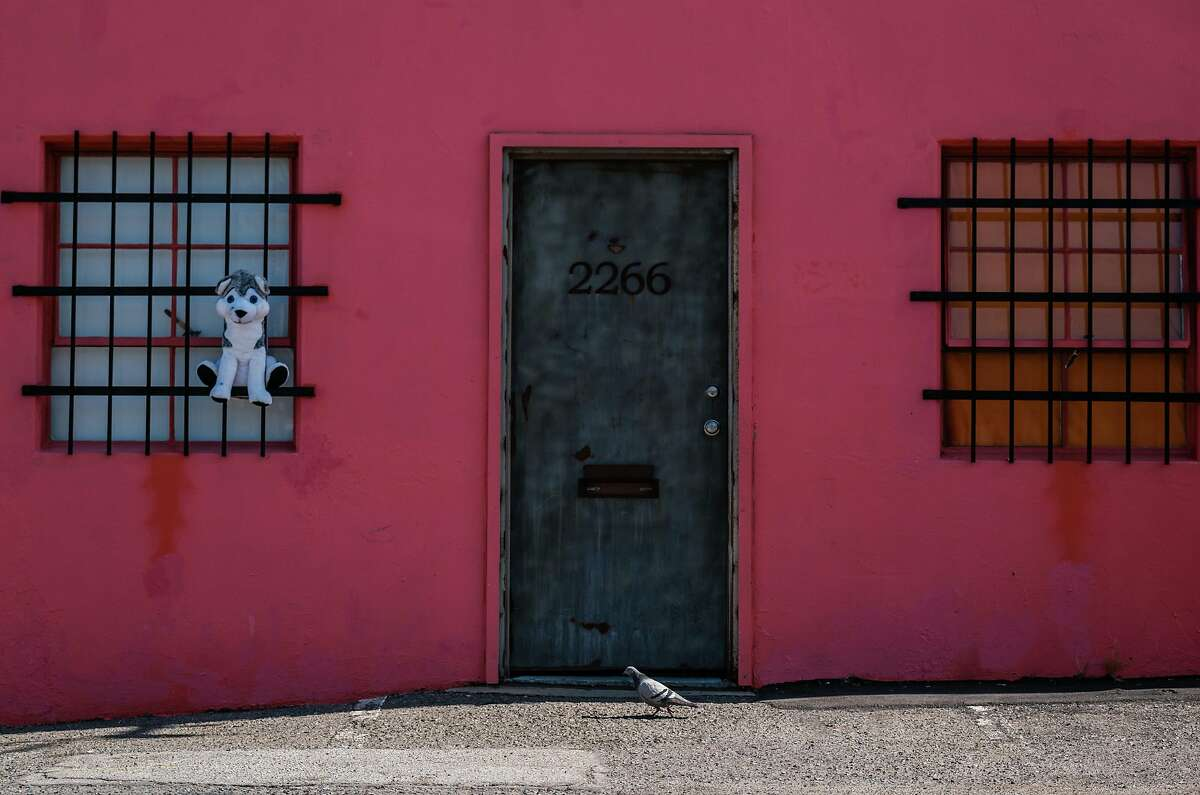 Pigeons are seen walking past a former metal shop where an illegal nightclub was shut down by the city attorney and police on Saturday in San Francisco, Calif. on Monday April 13, 2020.