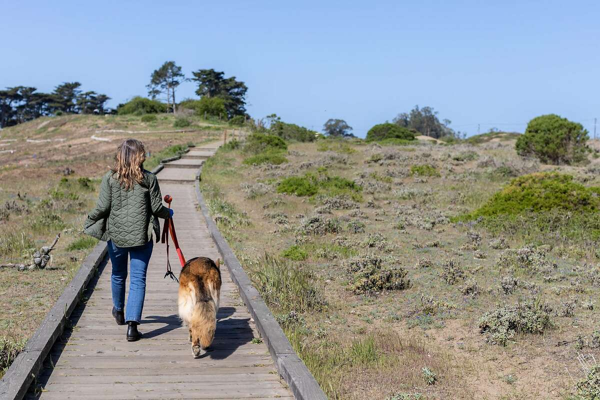 Christina Pappas strolls with her dog Lassen at Lobos Creek Valley Trail on Monday, April 13, 2020, in San Francisco, Calif.
