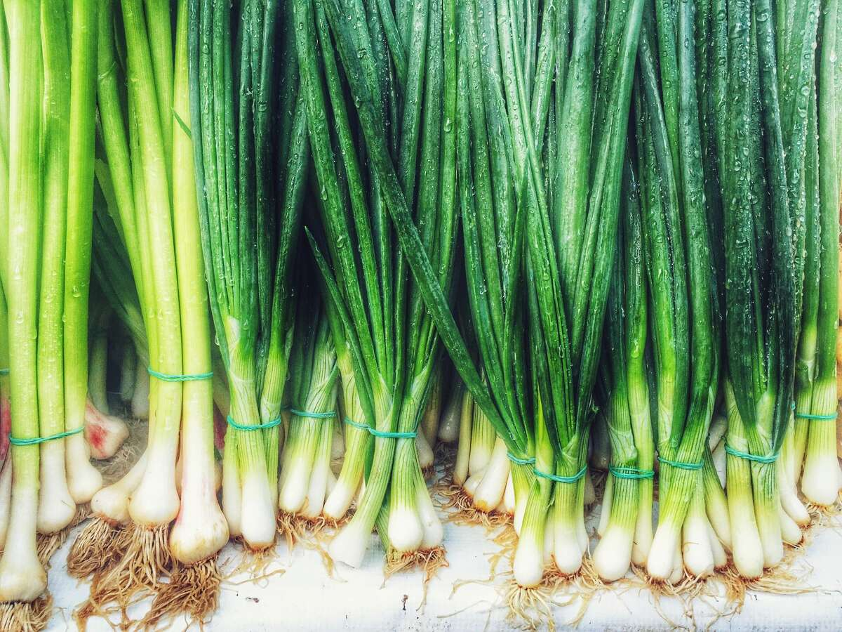 Regrow green onions Store green onions in a jar of water to keep them fresh longer. Also, super easily regrow your green onions by slicing off the ends, leaving roots attached and placing them in a small jar with water just covering the roots.