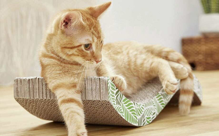 All Kind Wave Cat Scratcher, $6.98 Photo: Chewy