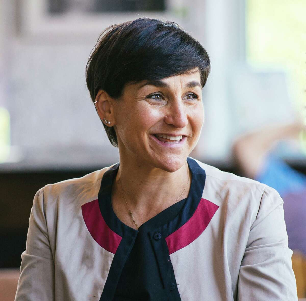 Michelle Lapine McCabe, Democratic candidate state Senate District 28