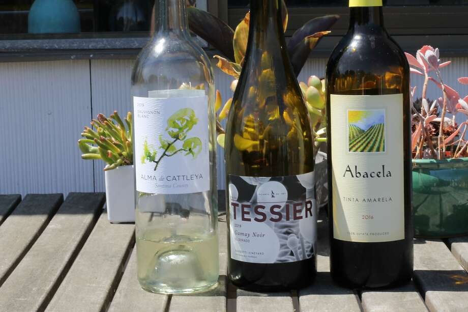 Don't mind the fill levels. This week's quarantine wines have included (from left) Alma de Cattleya Sauvignon Blanc, Tessier Gamay Noir and Abacela Tinta Amarela. Photo: Esther Mobley / The Chronicle