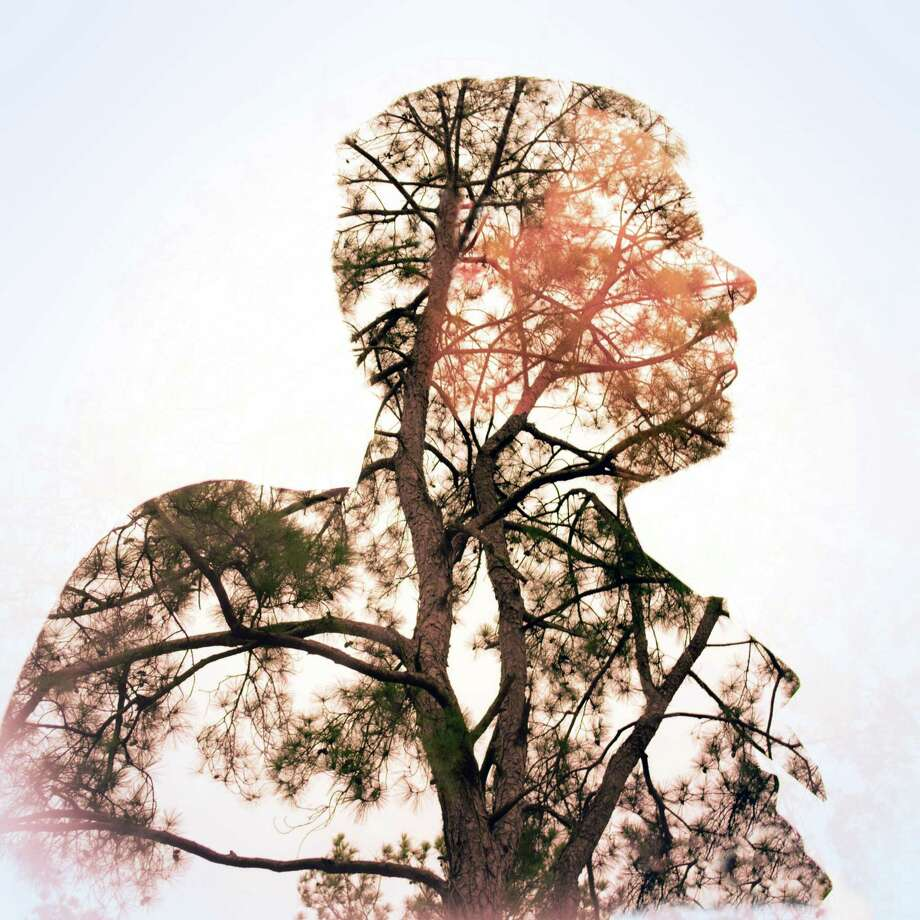 """Local artist John Truman beautifully explores the relationship between humans and nature in his digital photograph """"Tree Man."""" Using a photographic technique called double exposure (or multiple exposure), he combines two exposures inside his camera (a Nikon D750) to create a single image. Photo: Courtesy Image / Courtesy Image"""