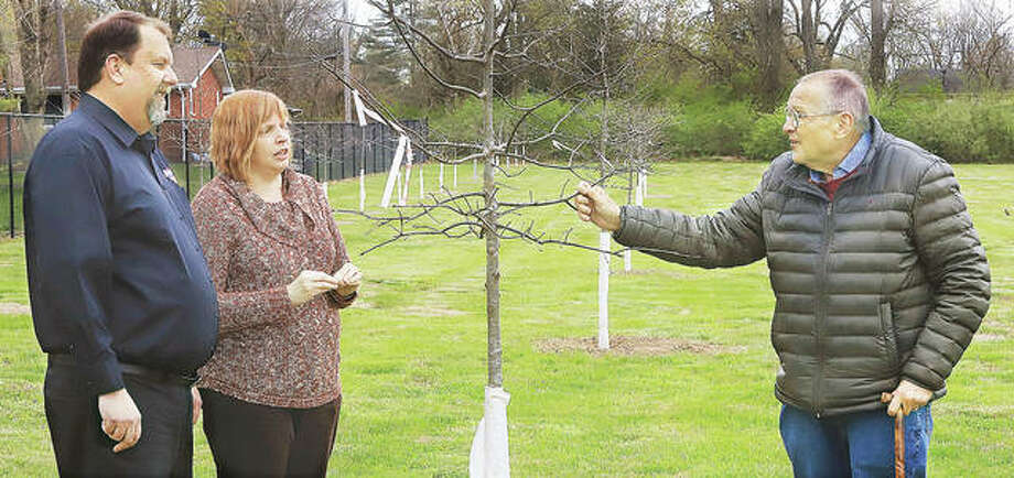 Chuck Tucker, owner of Tucker's Automotive, and his wife, Beth, talk with Godfrey Mayor Mike McCormick Thursday near some of the 35 oak trees the firm donated to Glazebrook Park in Godfrey. The trees are planted near the park's baseball diamond.