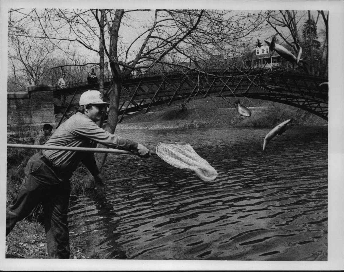 oe Arabski of the Albany Water Department stocks Washington Park Lake with fish from the Alcove Reservoir on April 17, 1989 (Arnold LeFevre/Times Union Archive)