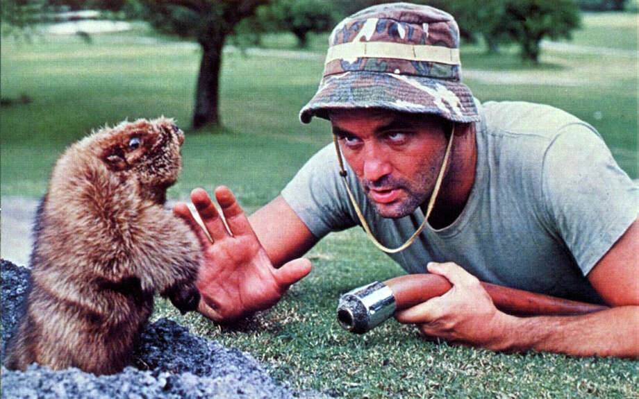 """Bill Murray's character confronts the gopher in """"Caddyshack."""" (Warner Bros. Pictures/TNS) Photo: Warner Bros. Pictures/TNS"""