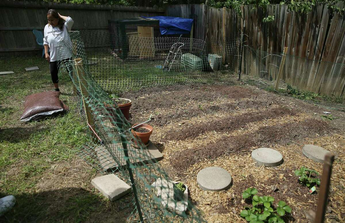 San Antonio homeowners like Maribel Junier have found ways to occupy themselves as the self-quarantine continues. Junier and her husband created a space for a small vegetable garden in their backyard. Some homeowners are turning to outdoor projects they may have wanted to do for a while but were unable to get to until now.