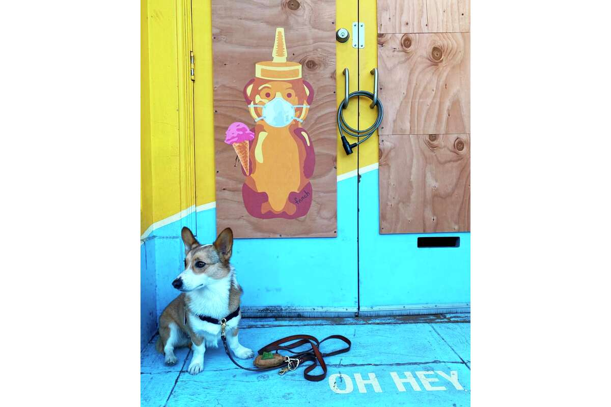 A happy corgi stops by one of fnnch's masked and ice cream cone-equipped bears during a walk.