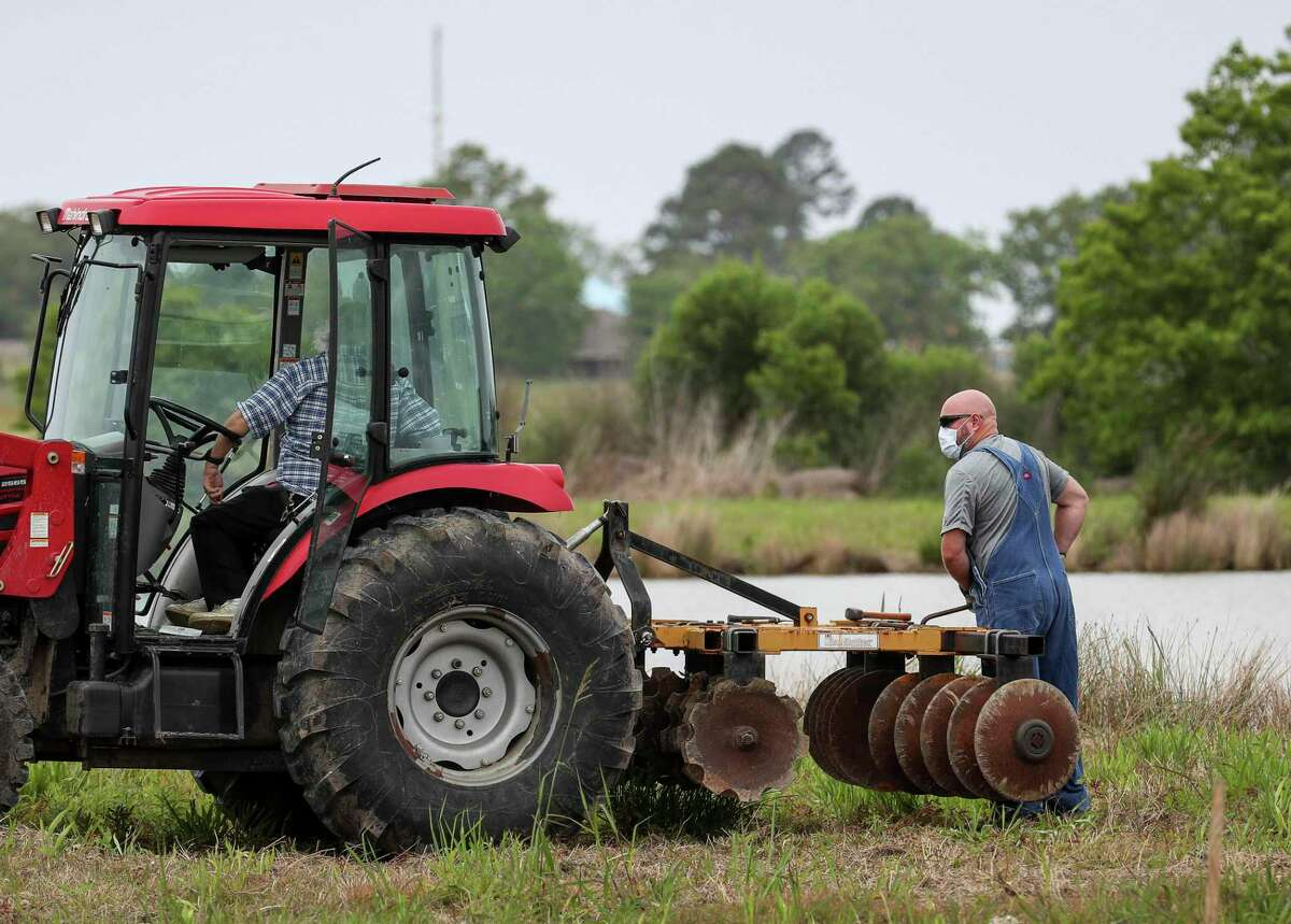 Two men work in a field Friday, April 17, 2020, at in Anahuac.