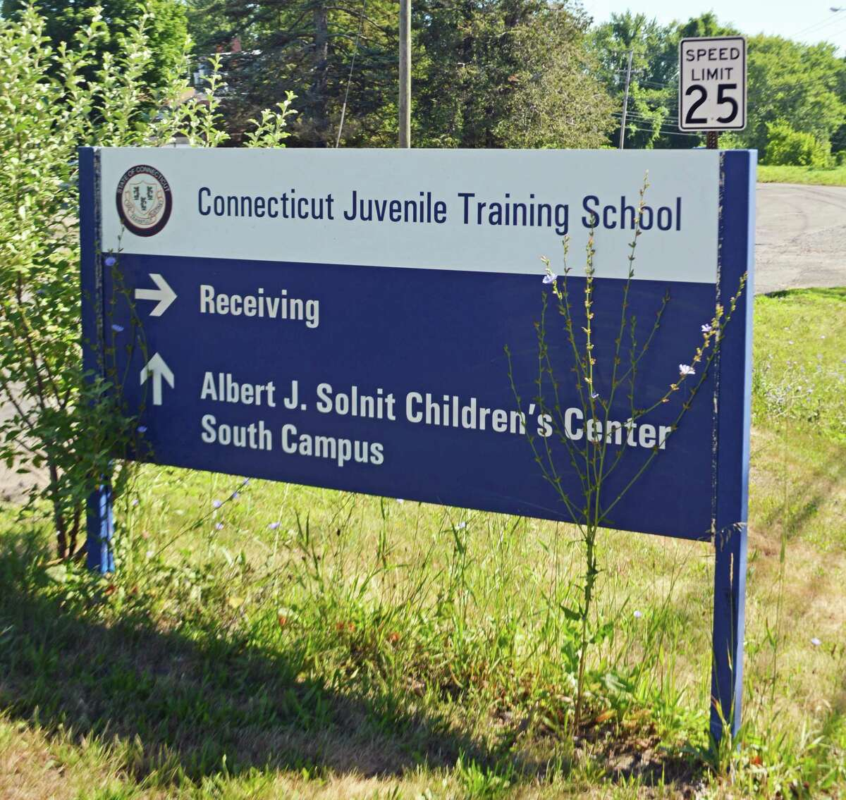The Connecticut Department of Children and Families runs the Albert J. Solnit Center for Children in Middletown.