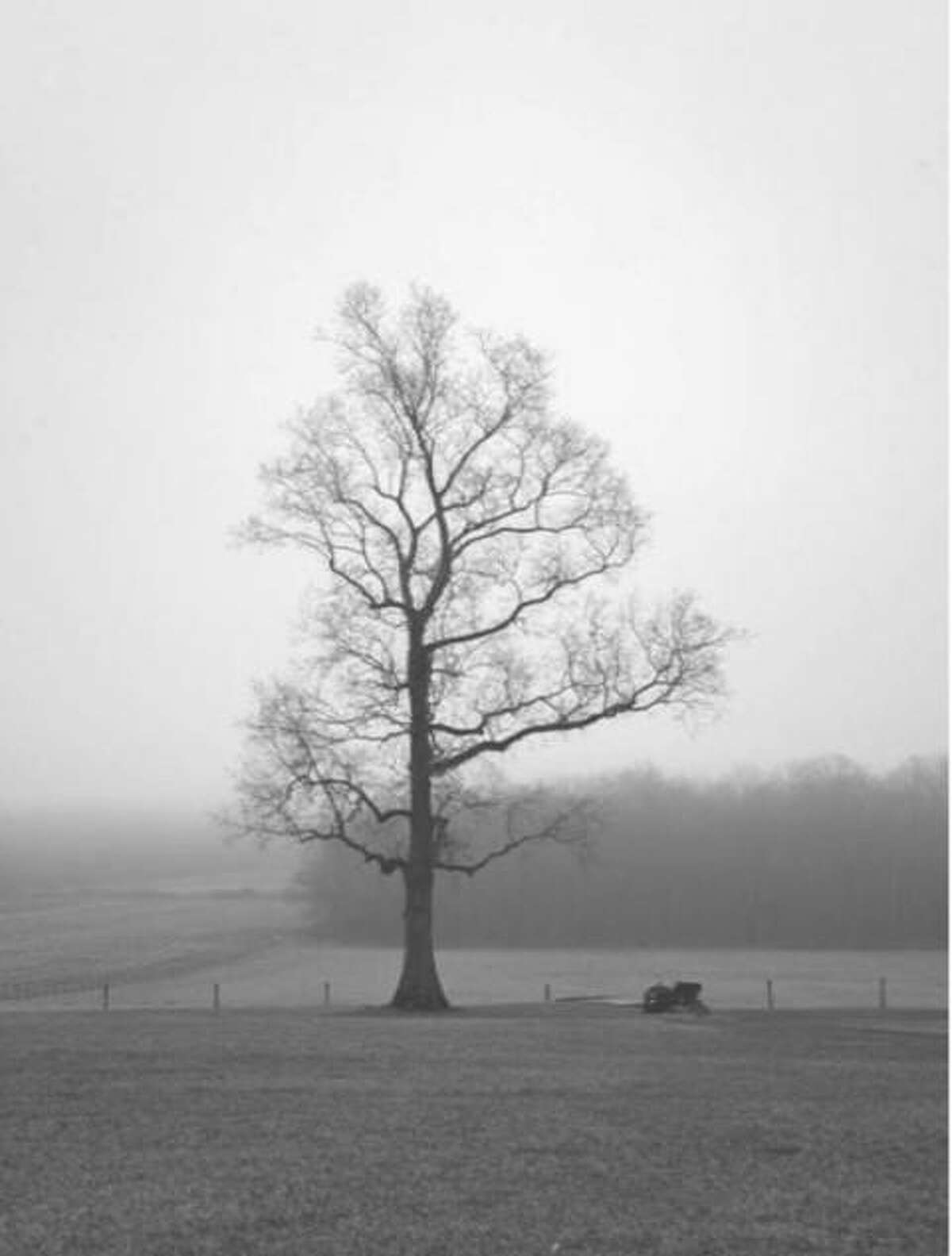"""Spectrum/Students in Linda McMillan's photography class at Shepaug Valley School in Washington recently documented their life during the pandemic. Above is a photograph taken by Shepaug junior Henry James captured a photograph of a lone tree as part of a documentary photo project for school. He wrote: """"Social distancing makes me feel like I stand as alone as this tree. I think that the aspect of social distancing is really affecting how we are all feeling. We are not used to being confined to our houses, not being able to leave for the things we thought were just everyday experiences. Now going to the store for food, going to get gas, as well as visiting friends and family puts us at risk as much as them. We take for granted our freedom in this world. And now that we've lost it, we miss it more than ever."""""""