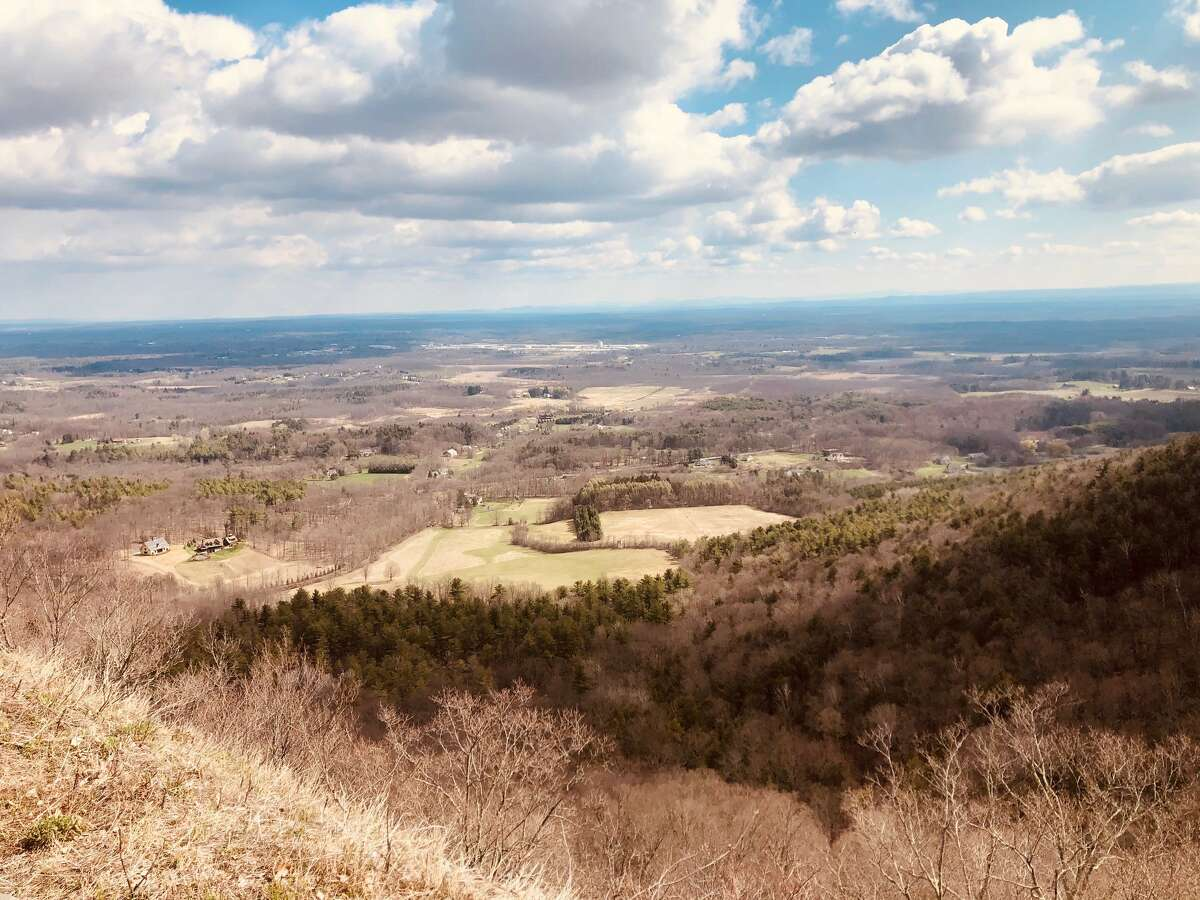 Steve Layne provides a magnificent view from the overlook at Thatcher Park. It won't be long before it's dominated by vibrant green.
